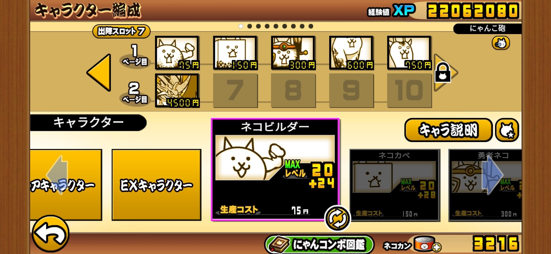竹田で使用したネコ